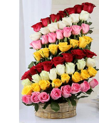 hf Blossoms of Joy