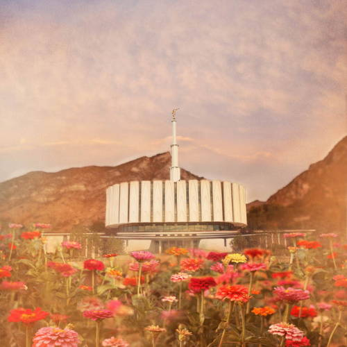 LDS art picture of the Provo Utah Temple surrounded by red and pink flowers.
