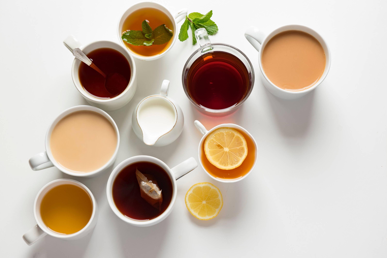 tea. herbs. cozy. medicine. herbal medicine.