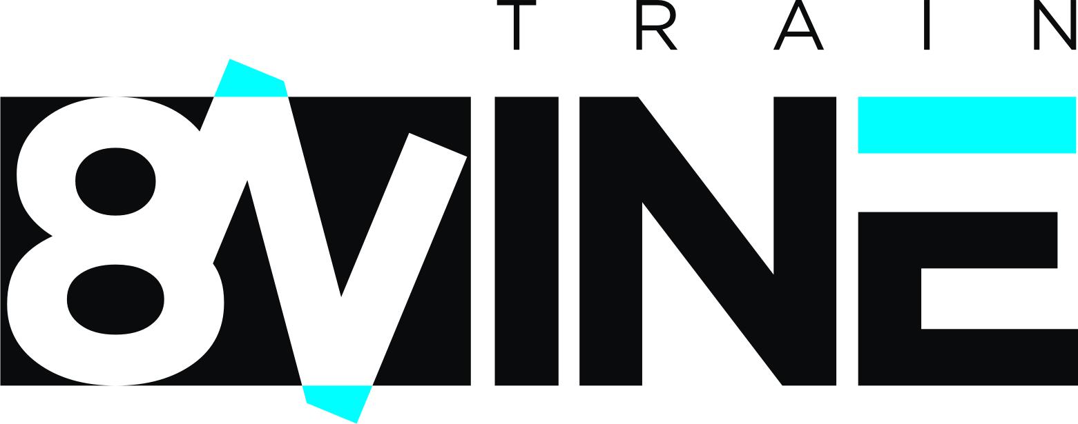 Train 8Nine logo