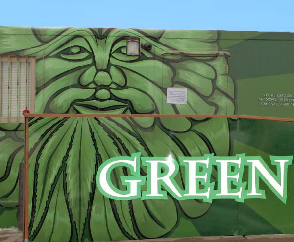 Exterior Vinyl Wall Wrap - Green Man Trailer Wrap