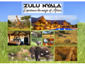 Experience The Magic of Africa!