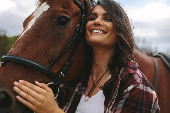 CBD Oil Basics for Horses