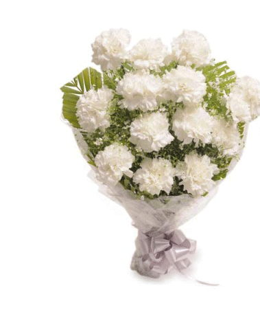 hf Hyderabad Florists White Carnation Flowers