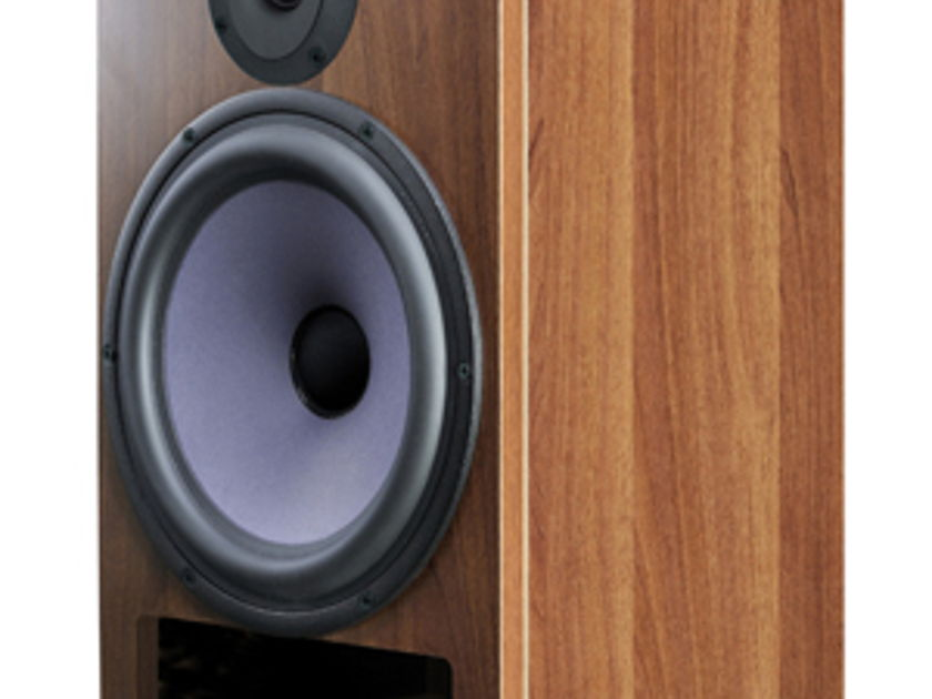 differential technology A25 2 way Monitor Speaker