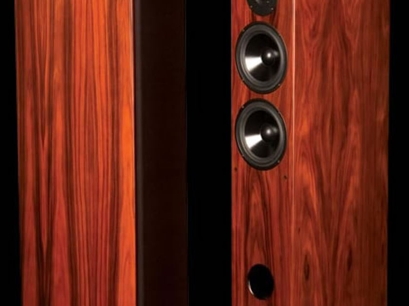 LSA LSA2 Rosewood Tower speakers