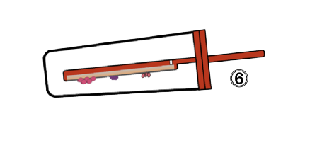 Schema of the red tester with formed colonies on the side