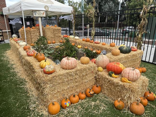 primrose garden decorated with hay bales, pumpkins, corn stalks, and spider web decorations!