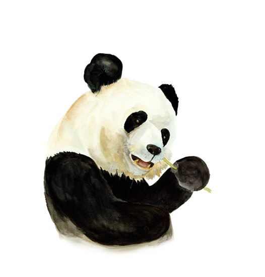 "Постер ""Дружелюбный панда"""