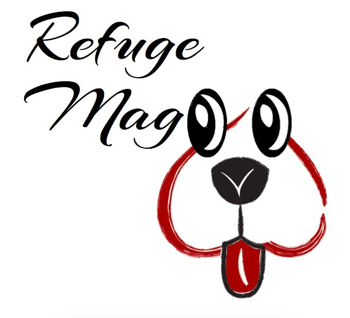 Wilder & Harrier | Refuge Magoo