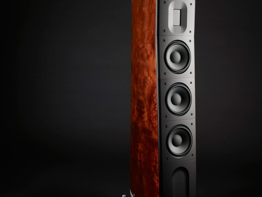 Raidho  D-3.1  in Walnut burl