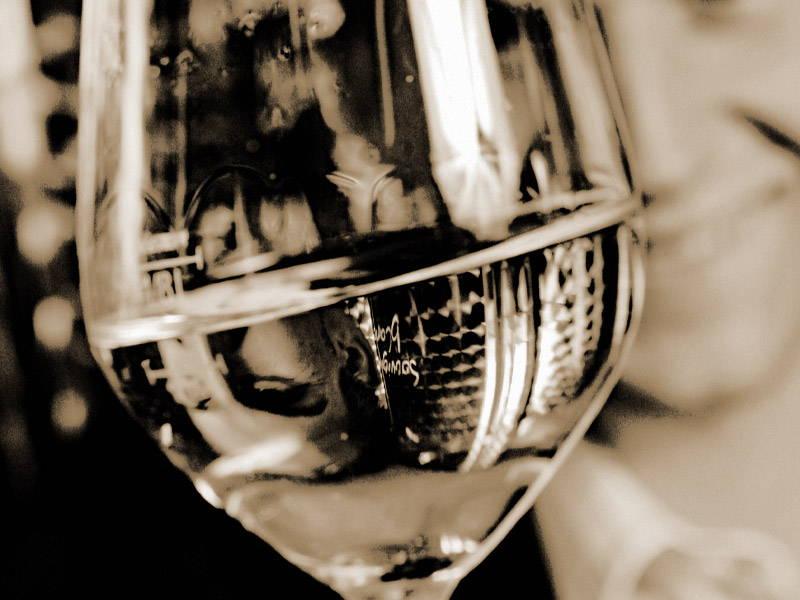 Weinglas mit Weißwein - Weingut Trummer
