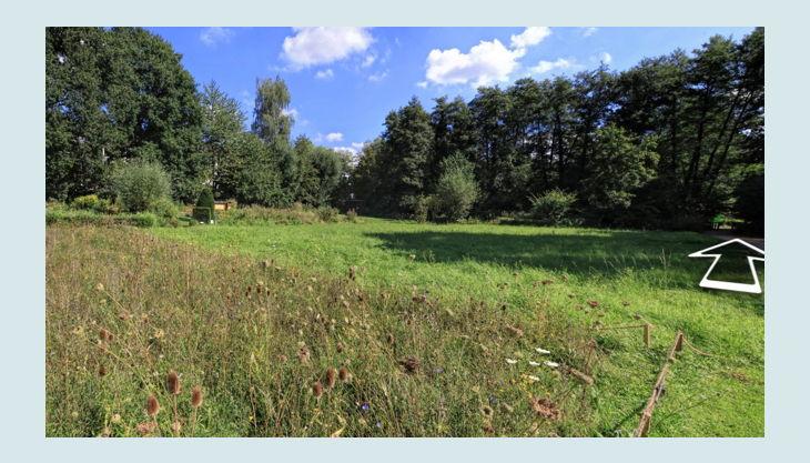 naturgut ophoven blumenwiesen
