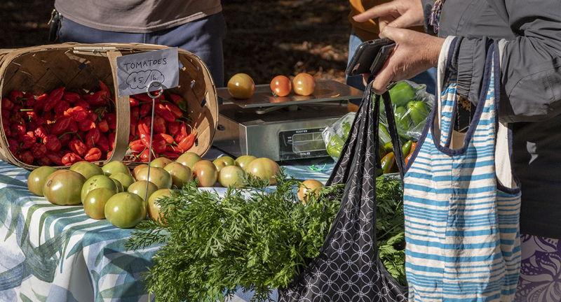 Piedmont Park Farmer's Market