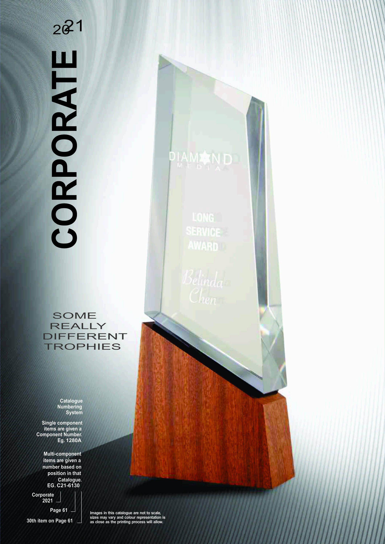 SDRT Corporate Trophies 2021