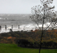 Port Monmouth was just bracing when Lorraine Mannix [Frank Noto's sister] took this shot yesterday morning. The vegetation no longer exists.