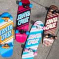 Skateboard cruiser Santa Cruz - Guida per principianti