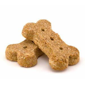 Dog Treats Dog 360