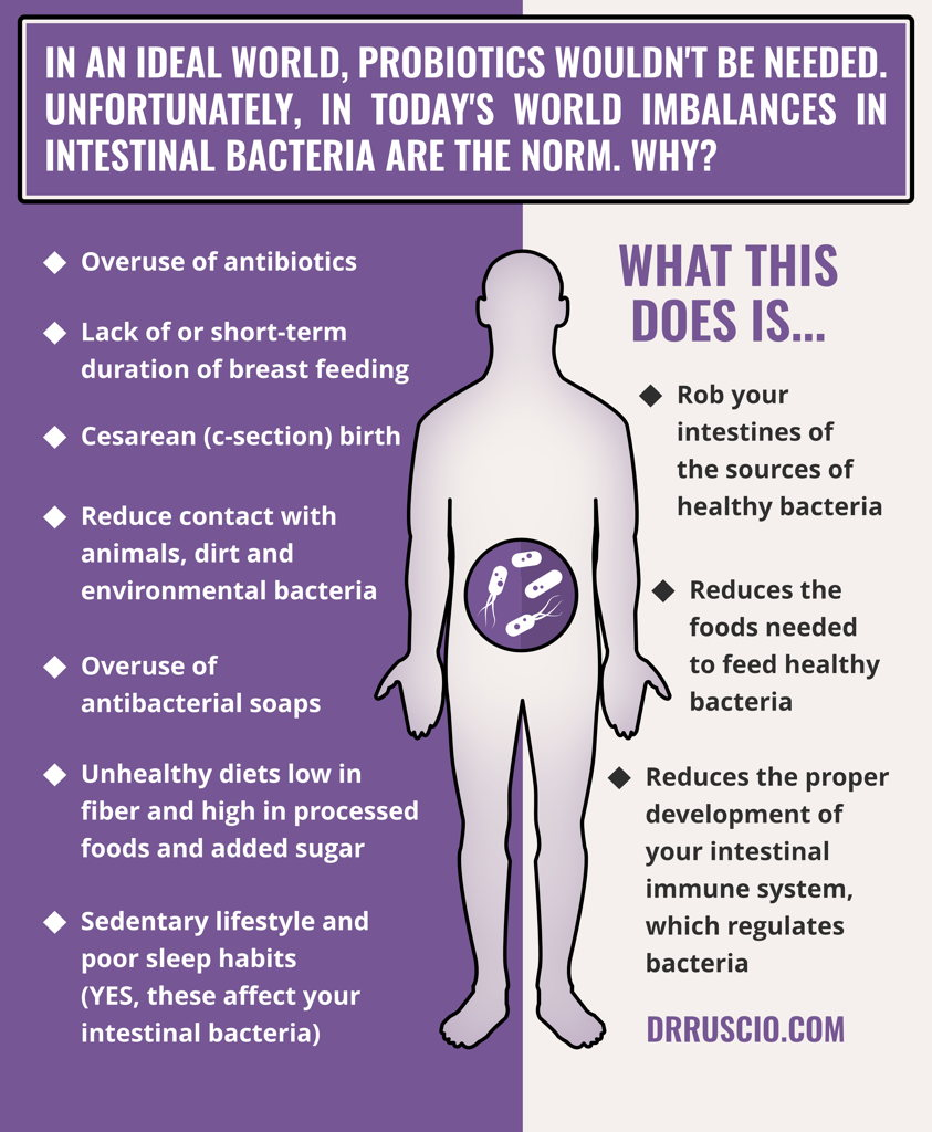 Why Probiotics Are Important & A Simple Protocol To Get Started -
