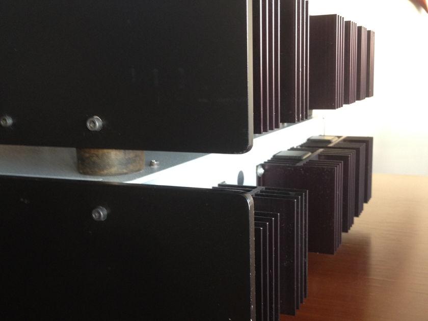 R.E. Design LNPA 150 Monoblock Amplifiers