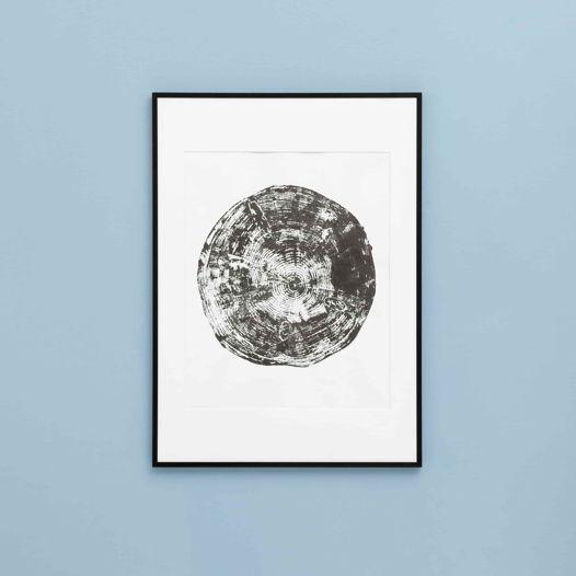 Постер с оттиском спила сосны