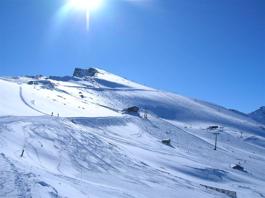 Spain - aguila sierra nevada.jpg