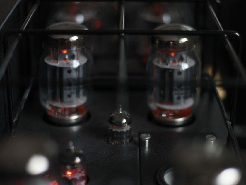 Rogue Audio M-150 Monoblocks