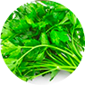 fastblast daily essentials contains organic parsley