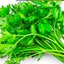 fastblast daily essentials contains organic parsley