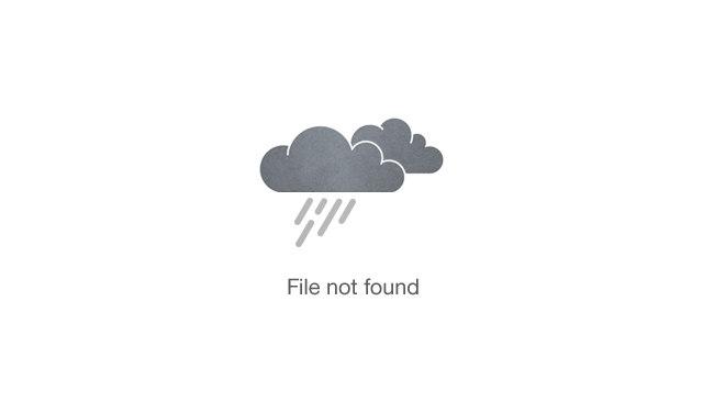 Rib Boat Adventure!
