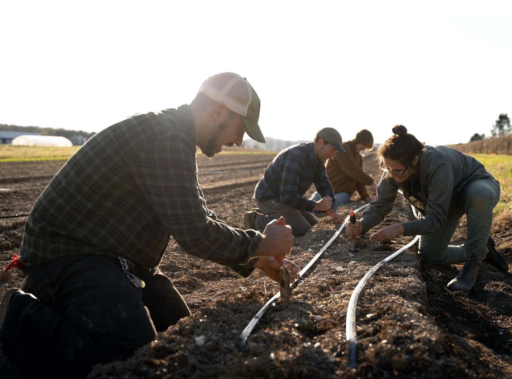 Rodale farm workers