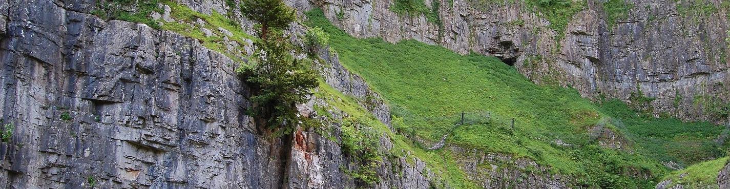 Дегустация сыра в пещерах Чеддер