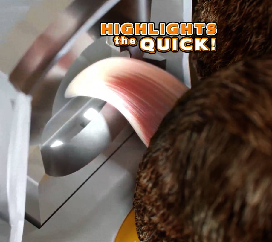 Highlights The Quick