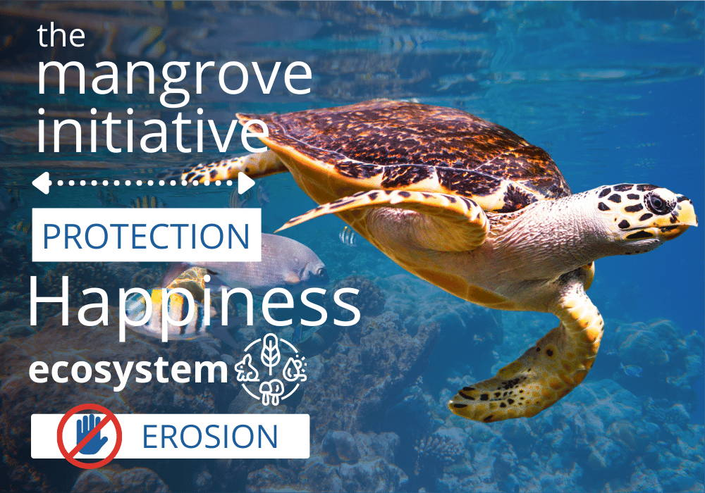 More about The Mangrove Initiative