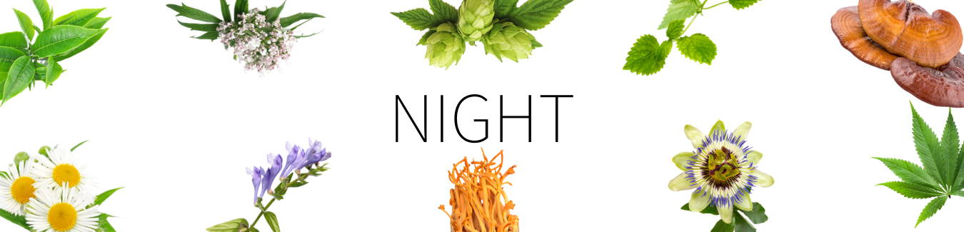 Aneu Night Ingredients