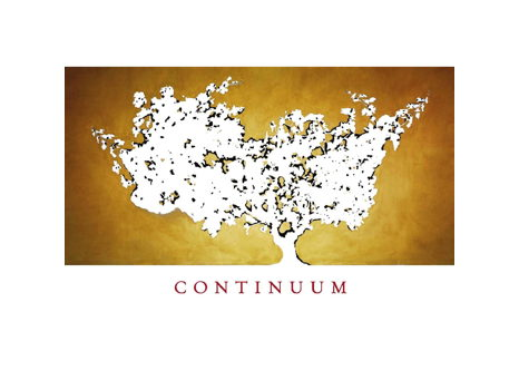 Continuum Proprietary Red Wine 2013 6-Pack – RP 97+