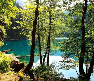 Путешествие на озеро Рица - завораживающие пейзажи уникальной природы