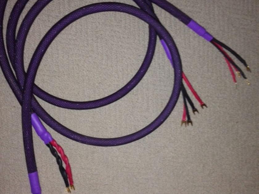 Acoustic Zen Technologies HOLOGRAM II BIWIRE CABLES MINT CONDITION 8 FEET