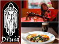 The Druid in Cambridge - $50 Gift Card