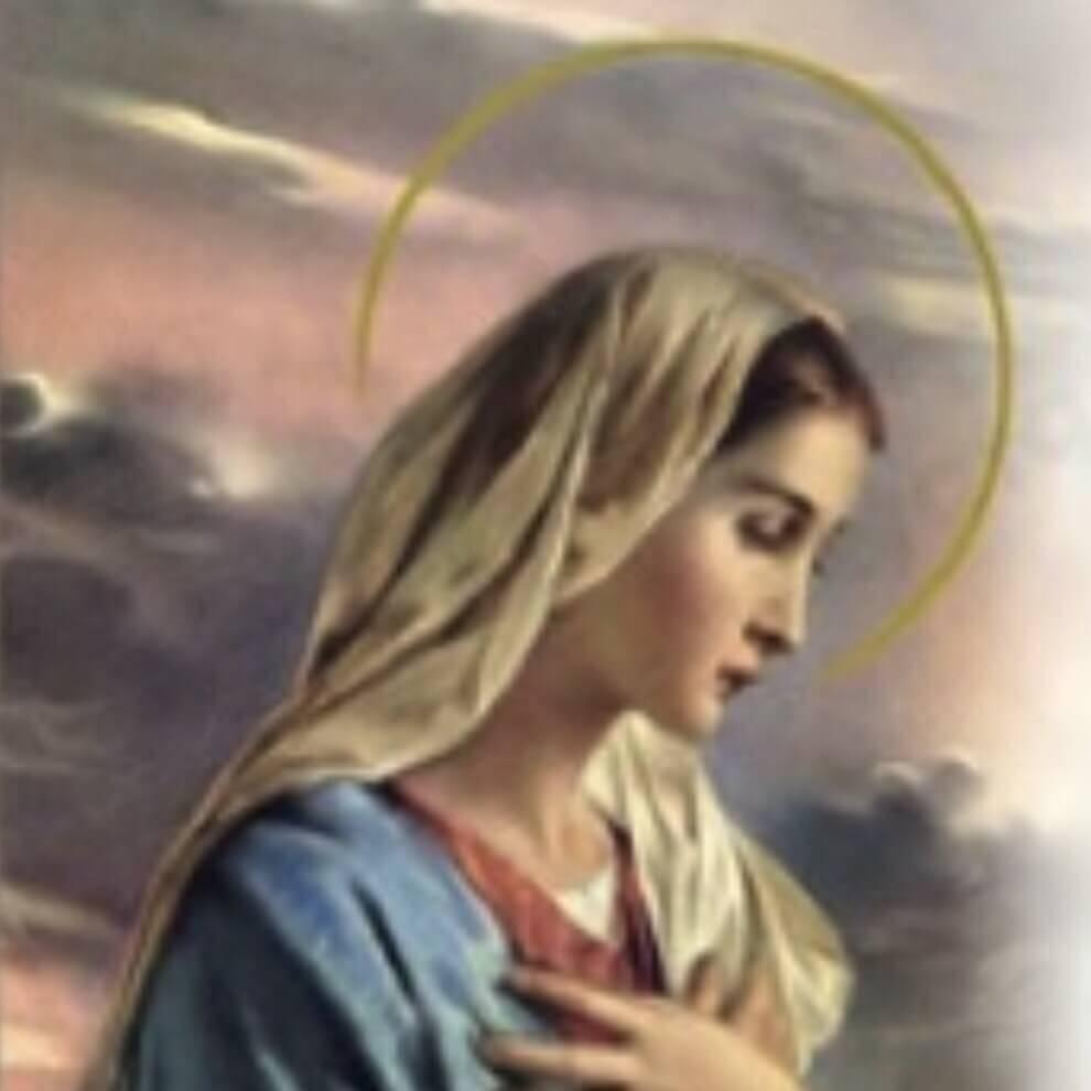 Maria Clara Taddeo