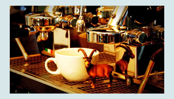 der steinbock cafe