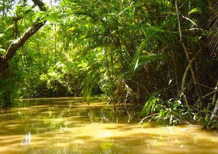 an-ultimate-peruvian-amazon-adventure