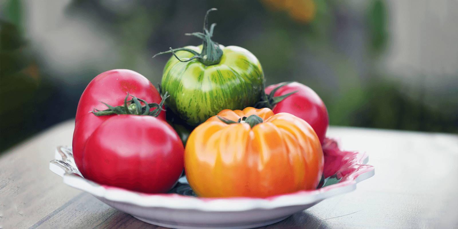 A bowl of fresh heirloom tomatoes