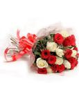 BF Red & White Roses