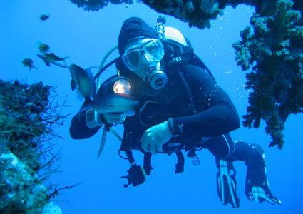 padi-diving-courses