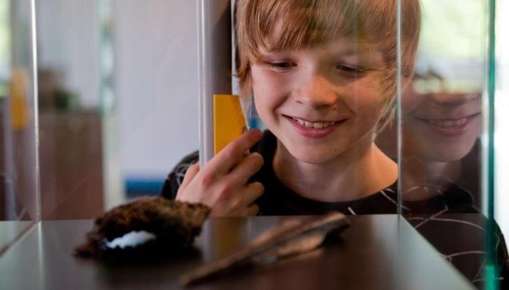 archäologisches museum hamburg a hammer und kreuz