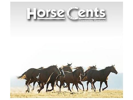 $100 Gift Card to Horse Cents