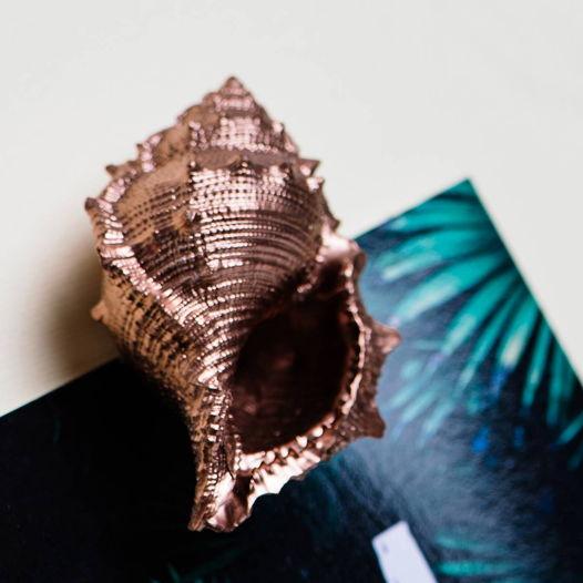 Магнитик с Буфонарией Перелеганс бронзового цвета
