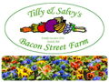 Planter & $75 Gift Card to Bacon St. Farm Garden Center