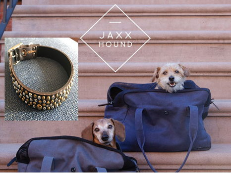 Doggie Chic!  Jaxx Hound Bag and DoggieStyle Collar